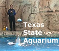 Offering an amazing array of aquatic and birding exhibits